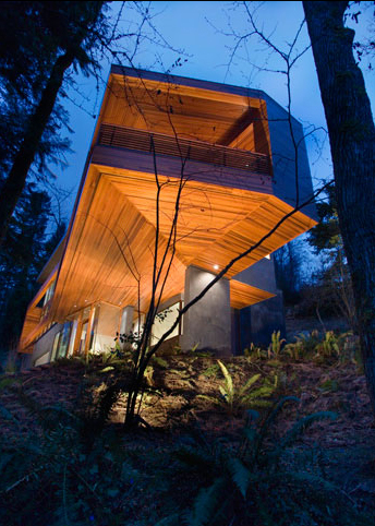 architect house6